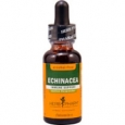 Herb Pharm Echinacea Immune Support Alcohol Free 1 fl oz