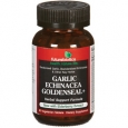Garlic Echinacea Goldenseal+ 60 Tablets