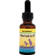 Herbs For Kids Willow and Garlic Ear Oil Drops 1 fl oz