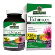 Nature's Answer Echinacea with Vitamin C & Calcium, Vegetarian Capsules