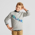 Boys' Brilliant Crew Sweatshirt - Cat & Jack Heather Gray L