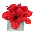 "Artificial Amaryllis Floral Arrangement Red 8"" - Lloyd & Hannah"