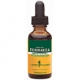 Herb Pharm Echinacea Immune Support 1 fl oz