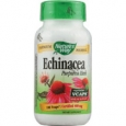 Nature's Way Echinacea Purpurea Herb 100 Vcaps