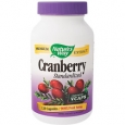 Cranberry Extract 120 Veggie Caps