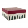 Red 'Merry And Bright' Gift Box - Spritz, Multi-Colored