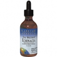 Echinacea Liquid Extract Full Spec 1 Ounces Liquid