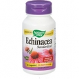 Echinacea (Standardized) 60 Capsules