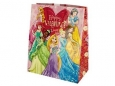 Disney Princesses Valentine's Day Gift Bag
