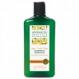 Andalou Naturals Moisture Rich Shampoo, Sweet Orange & Argan, 11.5 oz