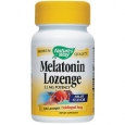 Melatonin Lozenge Fruit Flavor 2.5 MG 100 Lozenges