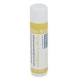 Rinse Bath & Body Co. Ginger Lemongrass Skin Stick